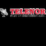 ANTON TELECOMUNICACIONES, S.L. (TELENOR)